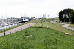 Diket mellom Oudeshilde havn og sentrum